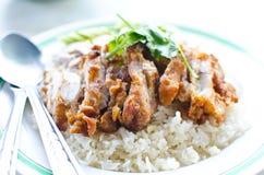 Alimento tailandese del pollo con riso. Fotografia Stock