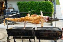 Alimento tailandese della via, carne fritta del coccodrillo su un barbecue da vendere, A fotografie stock libere da diritti
