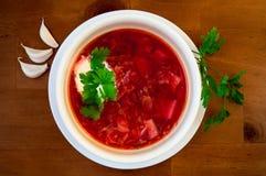 Alimento tradizionale ucraino, borsch Fotografia Stock