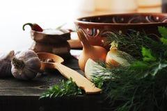 Alimento ucraniano nacional Imagem de Stock