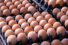 Alimento - uova sul gruppo del pacchetto del pannello nel mercato fotografia stock libera da diritti