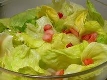Alimento vegetal - salada fresca Fotos de Stock