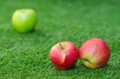 Alimento vegetariano sano: composizione delle mele su un fondo di erba verde Fotografie Stock Libere da Diritti