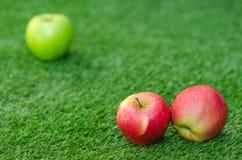 Alimento vegetariano sano: composizione delle mele su un fondo di erba verde Immagine Stock Libera da Diritti