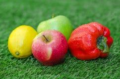 Alimento vegetariano sano: la composizione della frutta e delle verdure nei precedenti di erba verde Fotografia Stock Libera da Diritti