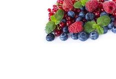 alimento Vermelho-azul em um branco Mirtilos maduros, corintos vermelhos, framboesas com hortelã em um fundo branco Foto de Stock Royalty Free