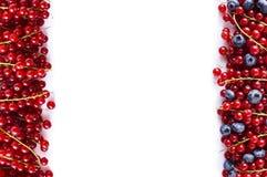 Alimento vermelho e azul em um branco Mirtilos maduros e corintos vermelhos em um fundo branco Bagas misturadas na beira da image Fotos de Stock Royalty Free