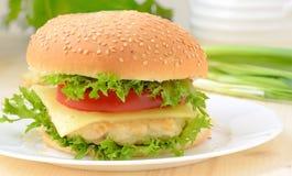 Alimentos de preparación rápida de la hamburguesa Imágenes de archivo libres de regalías