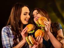 Alimentos de preparación rápida de la hamburguesa con el jamón Buen concepto de los alimentos de preparación rápida Fotos de archivo libres de regalías