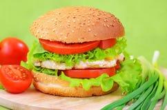 Alimentos de preparación rápida de la hamburguesa Imagen de archivo