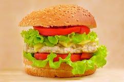 Alimentos de preparación rápida de la hamburguesa Fotos de archivo libres de regalías