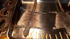 Alimentos de preparación rápida del lagarto Imágenes de archivo libres de regalías