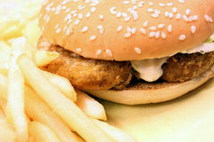 Alimentos de preparación rápida - hamburguesa y fritadas fotografía de archivo