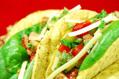 Alimentos de preparación rápida mexicanos (quite) imagen de archivo libre de regalías