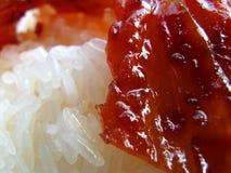Alimentos de preparación rápida tailandeses imagen de archivo