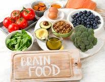 Alimentos do animal para o poder intelectual Imagens de Stock Royalty Free
