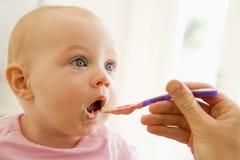 Alimentos para niños que introducen de la madre al bebé Imagen de archivo libre de regalías