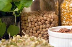 Alimentos sanos Foto de archivo libre de regalías