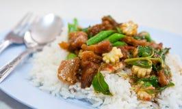 Alimentos tailandeses Fotos de archivo libres de regalías