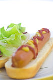 aliments de préparation rapide de crabot délicieux chauds Images libres de droits