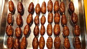 Aliments de préparation rapide de vers à soie Images stock