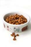 Aliments pour chats secs dans une cuvette en céramique Images stock