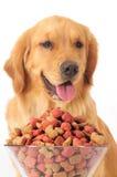 Aliments pour chiens Photographie stock