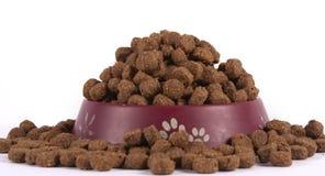 Aliments pour chiens dans une cuvette Photographie stock libre de droits