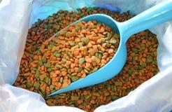 Aliments pour chiens sur le scoop en plastique bleu à vendre Image stock