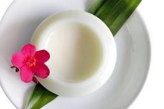 Aliments surgelés Photographie stock