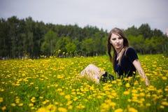 Alineada de la muchacha en la hierba con los dientes de león Foto de archivo