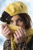 Alineada del invierno Imagen de archivo libre de regalías