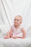 Alineada rosada Imagen de archivo libre de regalías