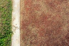 Alinee en campo de fútbol Imagen de archivo