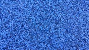 Alinhador longitudinal azul Foto de Stock