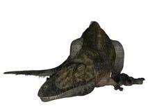 Alioramus - 3D Dinosaur Royalty Free Stock Photos