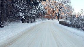 Alise o passeio abaixo da estrada de floresta nevado no inverno frio Por do sol em Lituânia, Gudasiai 4K video estoque