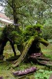 Alishan, città di Chiayi, foresta vergine di Taiwan nelle tre generazioni di legno Immagini Stock