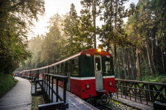 Alishan forest railway Royalty Free Stock Photography