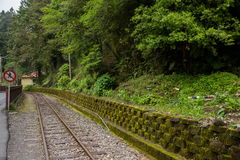 Alishan forest railway narrow gauge train. Chiayi City, Taiwan Alishan forest railway narrow gauge train Stock Photos