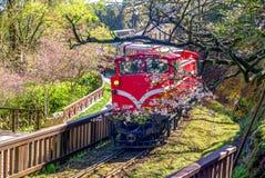 Alishan forest recreation area. Railway in alishan forest recreation area in chiayi Royalty Free Stock Photos