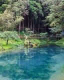 Alishan Lake Stock Images