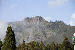 Alishan Mountain Royalty Free Stock Image