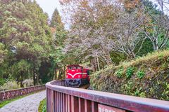 Train ride from Alishan forest railway station