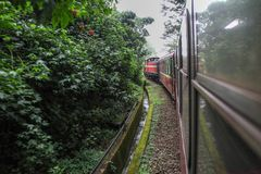 Alishan,taiwan-October 14,2018:Red train run in foggy day at alishan line on alishan mountain,taiwan. Alishan,taiwan-October 14,2018:Red train run in foggy day royalty free stock photography
