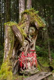 Alishan virgin forest tree god Stock Photography