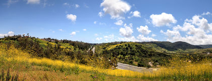 Aliso Viejo Wilderness Park view. With yellow wild flowers and green rolling hills from the top hill in Aliso Viejo, California, United States stock photo