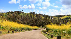Aliso Viejo Wilderness Park view Stock Photo