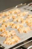 Aliste las galletas movidas hacia atrás en el papel del forro Fotografía de archivo