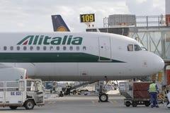 Alitalia logi på flygplats Fotografering för Bildbyråer